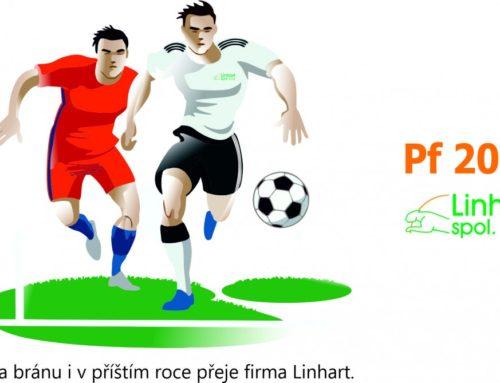 Úspěšný rok 2020 přeje firma LINHART